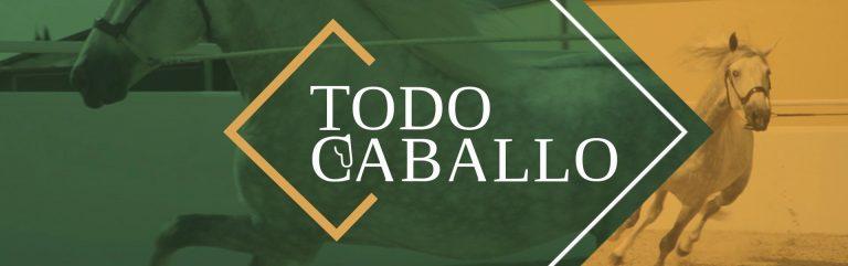 TODOCABALLA FRAME LOGO_v02